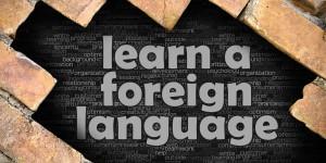 IULE- Foreign Language Training